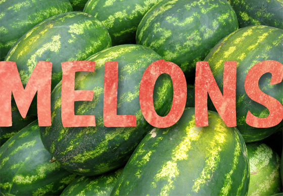 Melons have arrived!