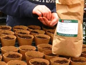 Planting fiber pots